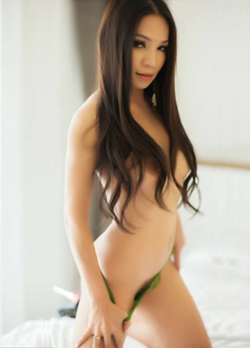 gay broken escort agency in phuket