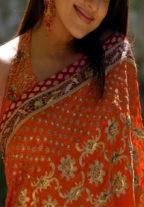 Anshika Sahgal