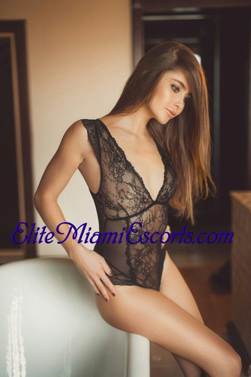 escort agency directory local escort directory